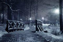 Winterpark nachts. Stockfoto