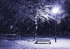 Winterpark nachts Lizenzfreies Stockfoto