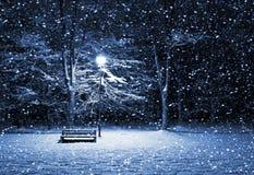 Winterpark nachts Stockfotografie