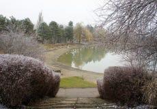 Winterpark und -see stockbild