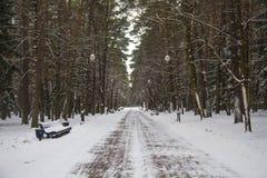 Winterparkgasse Stockbild