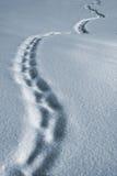 Winterpfad Stockbild