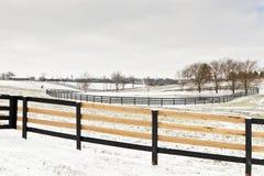 Winterpferden-Bauernhofszene mit frisch repariertem Zaun. lizenzfreie stockbilder