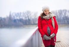 Winterporträt der schönen schwangeren Frau Stockbilder