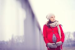 Winterporträt der schönen schwangeren Frau Stockfoto