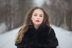Winterporträt eines Mädchens mit dem langen Haar Stockbild