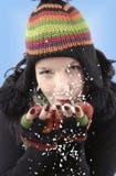 Winterportrait lizenzfreies stockbild