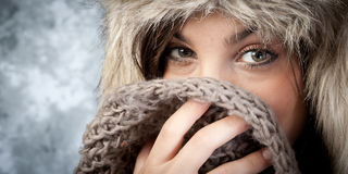 Winterportrait Lizenzfreie Stockbilder