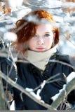 Winterportrait einer schönen Frau Stockbilder