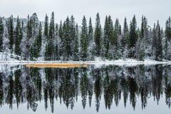 Winterreflexionen Lizenzfreie Stockbilder