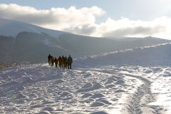 Winterreise Stockfotografie