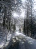 Winterroad Stock Photos