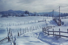 Winterruhe Stockfotografie
