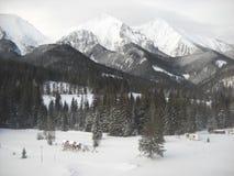 Winterruhe Lizenzfreies Stockfoto