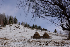 Winterrumänelandschaft Stockfotografie