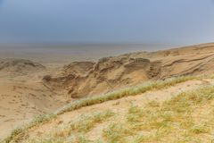 Dune landscape Dutch coast with sand drifts and wind eroded deep holes. Winters dune landscape Dutch coast with by autumn storms deep carved out  wind holes Stock Photos