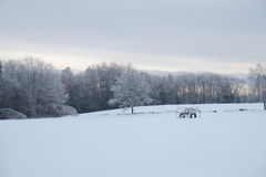 Winters evening on a Maine Farm Royalty Free Stock Images