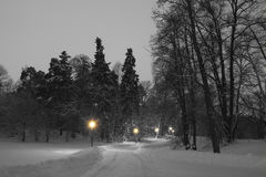A winters evening in the park Stock Photo