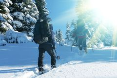 Winters hiking Royalty Free Stock Images