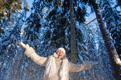 Winters joy Stock Images