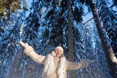Winters joy Stock Images