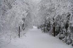 Winters landschap Royalty-vrije Stock Afbeelding