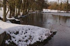 Winters landschap - Vijver van de Stomme in de stad van Elancourt in Frankrijk stock afbeelding