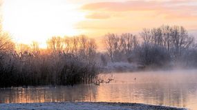 Winters morning. Early Winter's morning at the riverbank royalty free stock photography