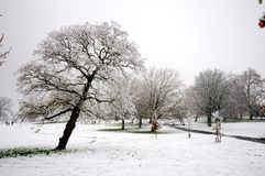 Winters Scene. Snow covered slopping grassy ground with trees blossom and a few people in the distance Royalty Free Stock Photography