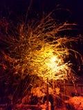 Night light Stock Photos