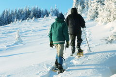 Winters sport Stock Photography