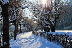 Winters Walk Royalty Free Stock Photography