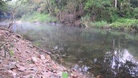 Wintersaison am Wald und am Kanal von Suan Phueng stock footage