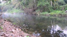 Wintersaison am Wald und am Kanal von Suan Phueng stock video footage