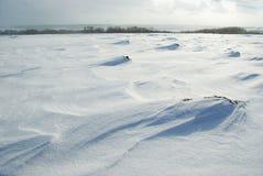 winterscape Поле снега стоковые фотографии rf