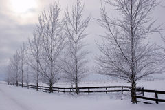 Winterscape. Photo of a rural winterscape Royalty Free Stock Image