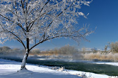 Winterscape. The beauty of winter Stock Photo