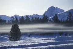 Winterscape i toppiga bergskedjan Nevada Mountains, Kalifornien Royaltyfri Fotografi