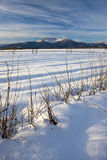 Winterscape on the prairie. Stock Images