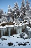 Winterscape scozzese Immagini Stock