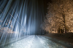 Winterscape and trees at night Royalty Free Stock Photo