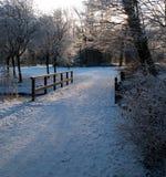 Winterscene Photographie stock libre de droits