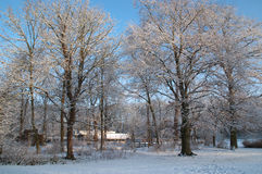 Winterscene Stockbild