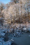 Winterscene Stockbilder
