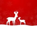 Winterscene - Kerstmiskaart Stock Afbeelding