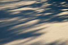 Winterschatten Stockfoto