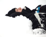 Winterschlaf stockbilder