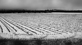 Winterschnee auf einem Feld und Wiese in Schwarzweiss Lizenzfreies Stockbild