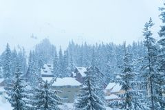 Winterschnee Haus rücksortierung Aß im Schnee stockfoto