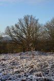 Winterschnee in ländlichem England Stockfotografie